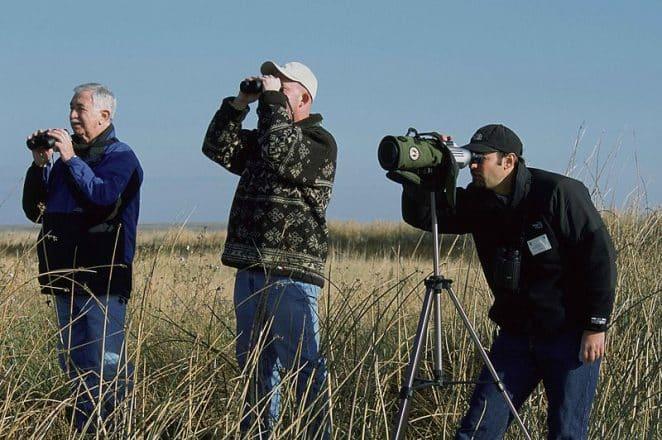 Un groupe d'ornithologues