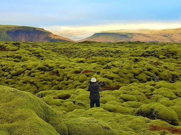 Eldhraun lava field.