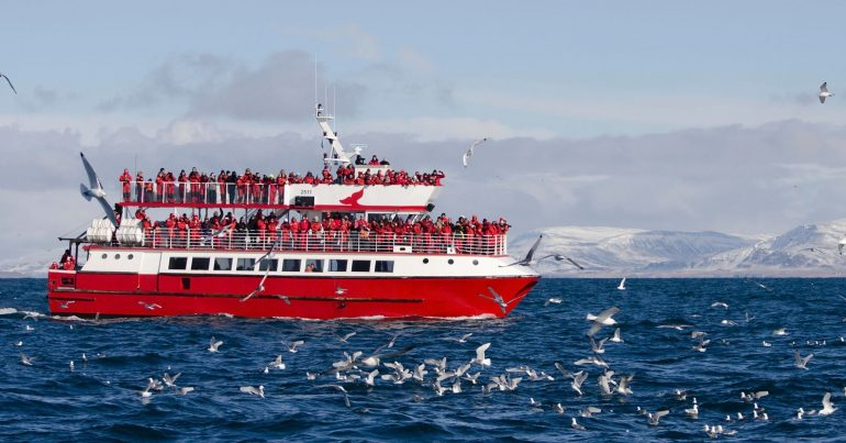 A whale watching boat in Iceland.