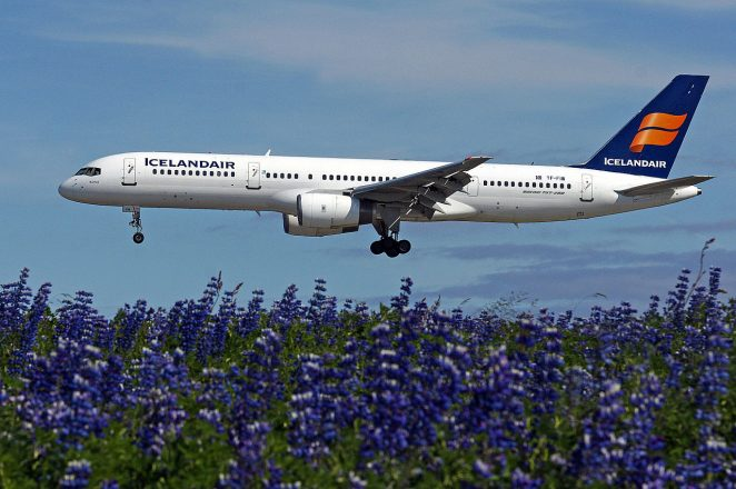 An airplane flying over blue lupine flowers.